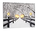 Fachhandel Plus LED Leinwand-Bild 30 x 40 cm Motiv Winter/Weihnachten auf der Brücke mit 6 Laternen Leuchtbild LED-Bild für die Wand