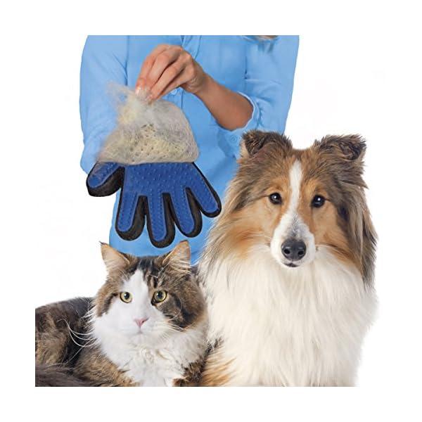 JML True Touch Pet Grooming Glove 3