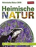 Heimische Natur - Kalender 2019: Tiere, Pflanzen, Phänomene - Daniel Lingenhöhl, Brigitte Lotz, Martina Schnober-Sen, Thomas Trösch