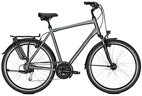 Raleigh Herren Oakland XXL irongrey matt 28 Zoll 27 Gang 2018 RH 60/XL