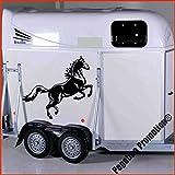 springendes Pferd Modell 1 Aufkleber Anhänger Pferd Anhänger ca. 80x60cm