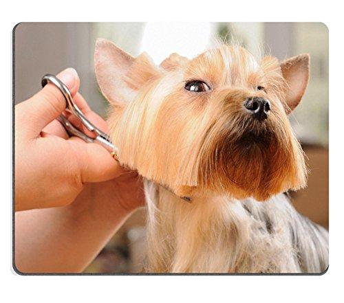 Liili Mouse Pad in gomma naturale mousepad Yorkshire Terrier ottenere il suo taglio di capelli a Groomer immagine ID 11985919 - Taglio Mats Immagini
