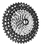 Leonardi Factory General lee 9-42 - Cassette para bicicleta, color gris, tamaño 11V