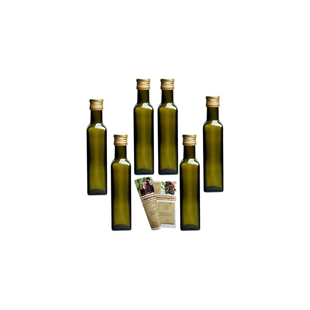 Gouveo Leere 250 Ml Maraska Flaschen Inkl Schraubverschluss Und 28 Seitige Flaschendiscount Rezeptbroschre Likrflaschen Schnapsflaschen Essigflaschen Lflaschen