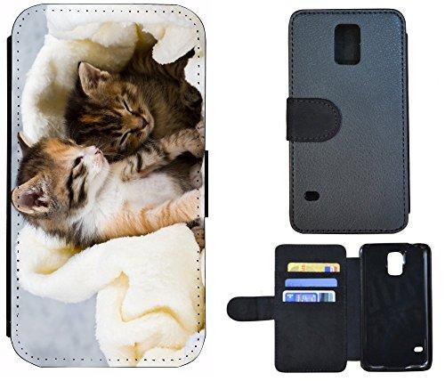 Flip Cover Schutz Hülle Handy Tasche Etui Case für (Apple iPhone 5 / 5s, 1042 Tiger Animiert Braun Weiß) 1036 Katze Katzen Babys Kätzchen Braun Weiß Süß