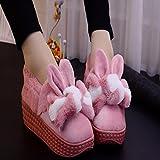 Das Paket mit Hausschuhe aus Baumwolle weiblichen Aufenthalt dicke schöne Cartoon stilvolle high-heel Schlüpfen Sie in die Schuhe warme Winter, 260 für 37-38 Yards, Leder Rot