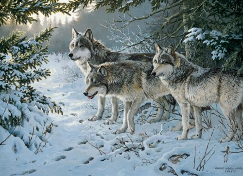 puzzle-1000-pices-persis-clayton-weirs-le-sentier-des-loups