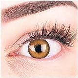 Glamlens Farbige Braune Kontaktlinsen Mirel Brown Stark Deckende Natürliche Silikon Comfort Linsen - 1 Paar (2 Stück) Mit Stärke -5.00 Dioptrien