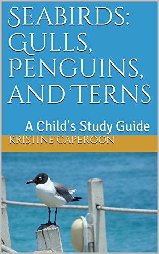 Seabirds: Gulls, Penguins, and Terns: A Child's Study Guide Descargar Epub Ahora