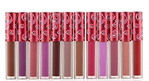 Hosaire 12 Colores Impermeable Mate Brillo De Labios