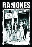 Ramones: Ramones - Cbgb Photo Flagge (Zubehör)