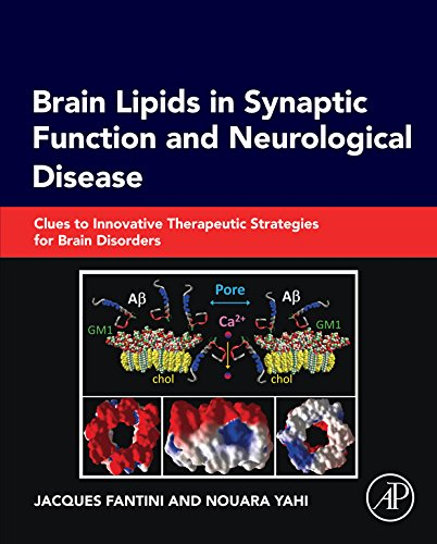 Brain Lipids in Synaptic Function and Neurological Disease: Clues to Innovative Therapeutic Strategies for Brain Disorders (English Edition)
