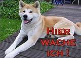 INDIGOS UG - Türschild FunSchild - SE64 DIN A4 ACHTUNG Hund AKITA INU - für Käfig, Zwinger, Haustier, Tür, Tier, Aquarium - aus hochwertigem Alu-Dibond beschriftet sehr stabil