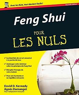 Feng Shui Pour les Nuls par [Kennedy, David, DUMANGET, Agnès]