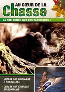 Au Coeur De La Chasse : Chasse aux sangliers à Navacelles / Chasse aux canards en Roumanie