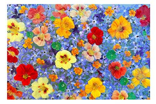 puzzle 1000 pezzi fiori nasturzio, salvia giochi educativi per bambini di intrattenimento per adulti