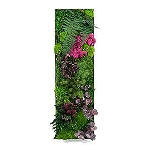Tableau végétal stabilisé Jäkälä 80 x 25 cm