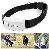 Tkstar Mini-GPS-Tracker für kleine Hunde oder Katzen, inklusive Halsband und Online-Tracking - 4