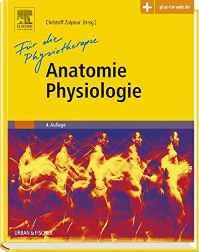 Anatomie Physiologie für die Physiotherapie
