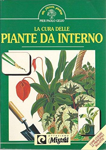 la-cura-delle-piante-da-interno-come-curare-le-principali-malattie
