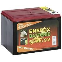 Weidez.Batterie 55Ah 9V
