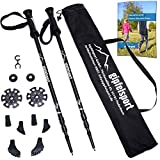 Trekking poles – pair with bag I Hiking and Walking poles for men
