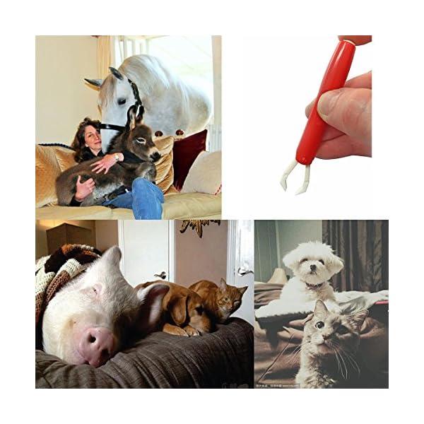 Calops Tick Remover Tick Removal Ticks Tweezers Grooming Tools For Dog,Cat,Horse,Rabbit Eliminate Pests Flea Tweezers 2