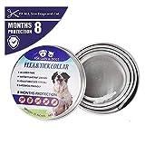 L&XY Collare per Pulci E Zecche per Cani - Collare Regolabile E Impermeabile per Cani E Pulce con Olio Essenziale Naturale