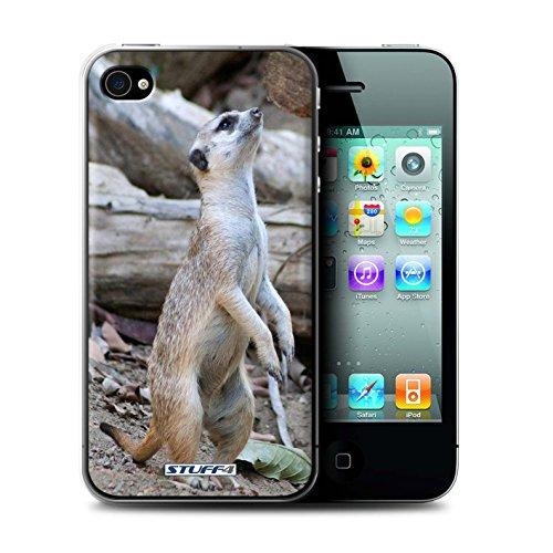 Stuff4® Hülle/Hülle für Apple iPhone 4/4S / Erdmännchen Muster/Wilde Tiere Kollektion - Iphone Telefon-abdeckungen 4s