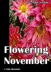 Baltic Garden, November: Flowering November (English Edition)