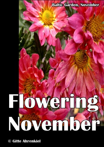 Baltic Garden, November: Flowering November (English Edition)