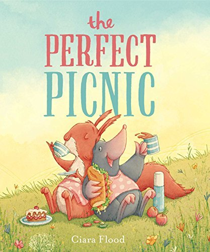 The Perfect Picnic by Ciara Flood (2016-04-05)