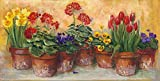 Carol Rowan – Spring in The Greenhouse Fine Art Print (30,48 x 45,72 cm)