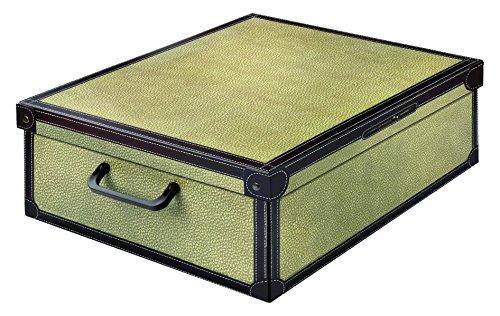 Kanguru Scatola Sottoletto in Cartone, portabiancheria, Abiti, Armadio, Fantasia Tapirus, Misura per sotto Letto, Multicolore, 60x50x17 cm