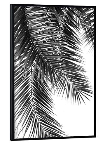 artboxONE Poster mit schwarzem Kunststoffrahmen 30x20 cm Black and White Palm Leaves von Lexie Greer