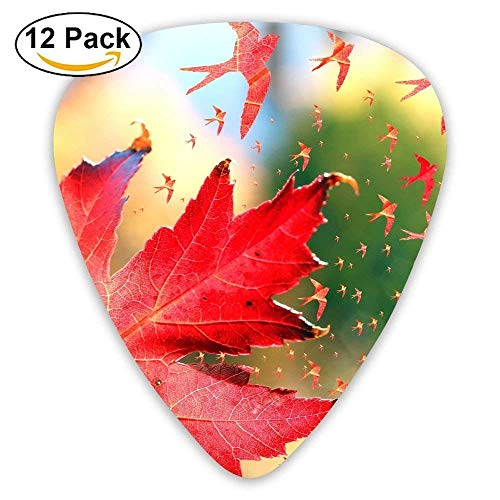Red Maple Leaves Classic Guitar Pick (12 Pack) for Electric Guita Bass,0.46/0.73/0.96 Mm Guitar -
