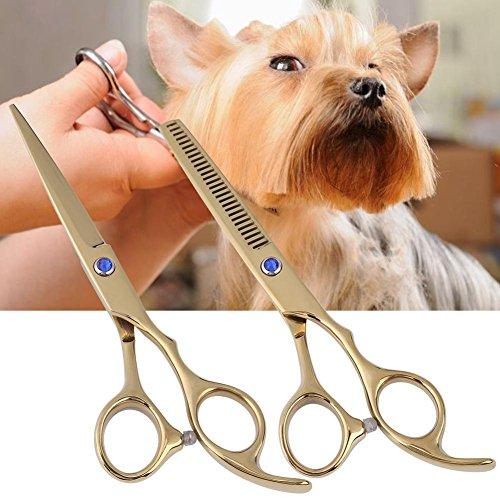 Haofy forbici e pettine per cane professionali per grooming per animali domestici forbici in acciaio inox per cane e gatto, 6 in(d'oro)