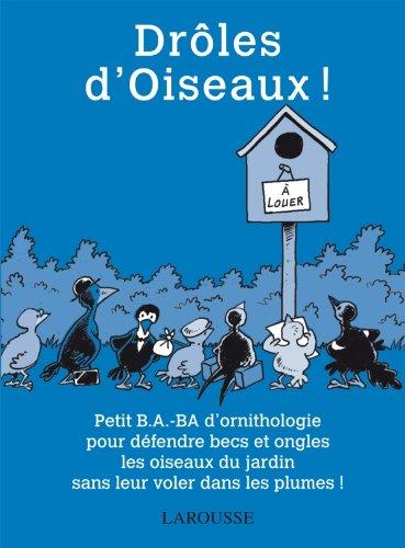 Drles d'Oiseaux !