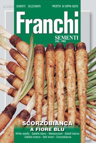 Franchi Salsifis blanc