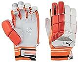 #4: Puma Evo 4 Cricket batting Gloves ( Men , Left Hand)