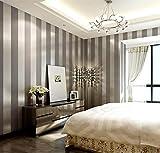 LXPAGTZ Einfache moderne Vlies-Tapete Schlafzimmer Wohnzimmer schwarzen und weißen vertikalen Streifen blau Östliches Mittelmeer Wand Tapete lange 9.5 m * Breite 0,53 m (5 m ²) , 11085