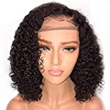 JIYCZK Afro Wig Short Curly Wave Lace Front Human Wigs Looking Natural Hair for Black Women 180% Density Synthetic Wig Brazilian Remy Hair 14Inch