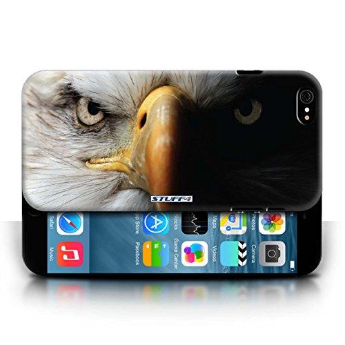 Coque de Stuff4 / Coque pour Apple iPhone X/10 / Loup Design / Animaux sauvages Collection Aigle / Oiseau