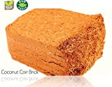 #9: Coco peat, 5 kg Block for Gardening,Kitchen, Home, Terrace Garden, Outdoor Gardening [ can Expands Upto 50 Kgs and Hold Upto 80 litres of Water ]