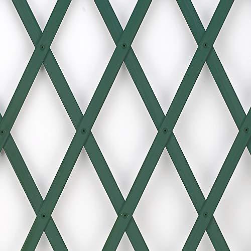 Treplas 0,50x2 m, Verde, Traliccio Estensibile in PVC per Sostegno a Muro di Fiori e Piante Rampicanti