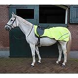 Horka equestre vento impermeabile Rainlegs riflessione qualità Horse Rider Safety, Yellow, UK 5'0 / EU 105cm / US 60