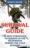 Survival Guide: 20 Best Strategies To Survive In The Wilderness During The Cold Seasons (English Edition)