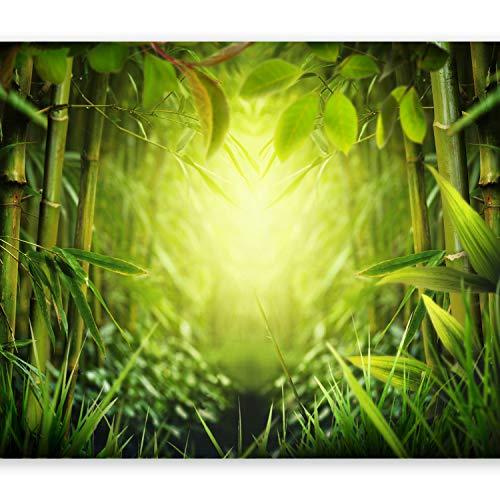 murando - Fototapete selbstklebend 49x35 cm decor Tapeten Wandtapete klebend Klebefolie Dekofolie Tapetenfolie - Natur grün 10110903-31 (49x Toner)