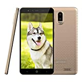 4G Smartphone ohne Vertrag Leagoo Z7 Handy Mobiltelefon 3000mAh Akku Günstiges Telefon 5,0 Zoll FWVGA Display Dreifachkameras Flash LED Android 7.0, RAM 1GB+ ROM 8GB 32GB Erweiterbar (Gold)