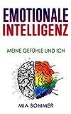 Emotionale Intelligenz: Meine Gefühle und Ich